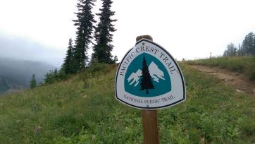 We walked part of the PCT.