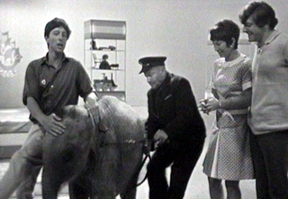Blue Peter Elephant