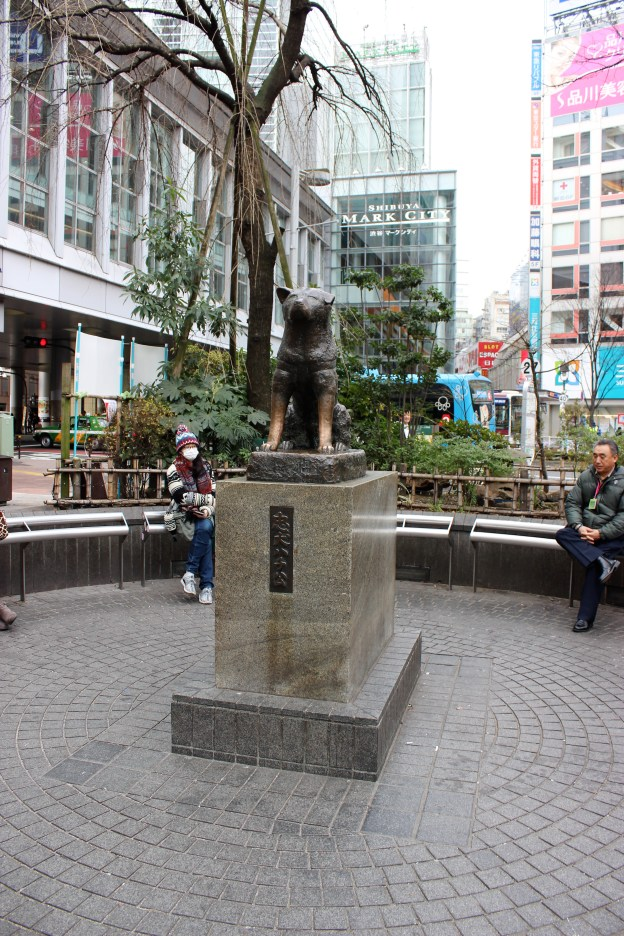 Hachi, the famous Japanese dog.