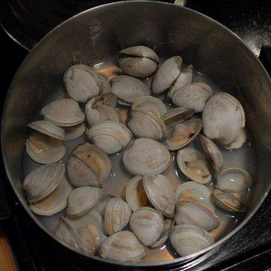 goodbye clams, hello chowda!