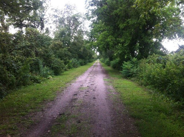 dirt bicycle trail