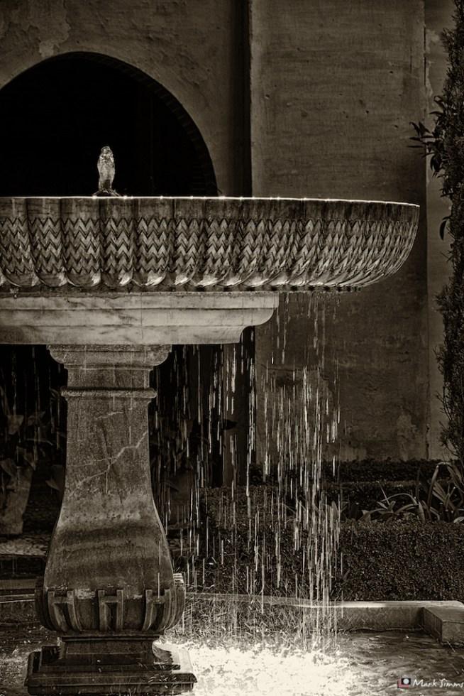 Nasrid Palaces 17