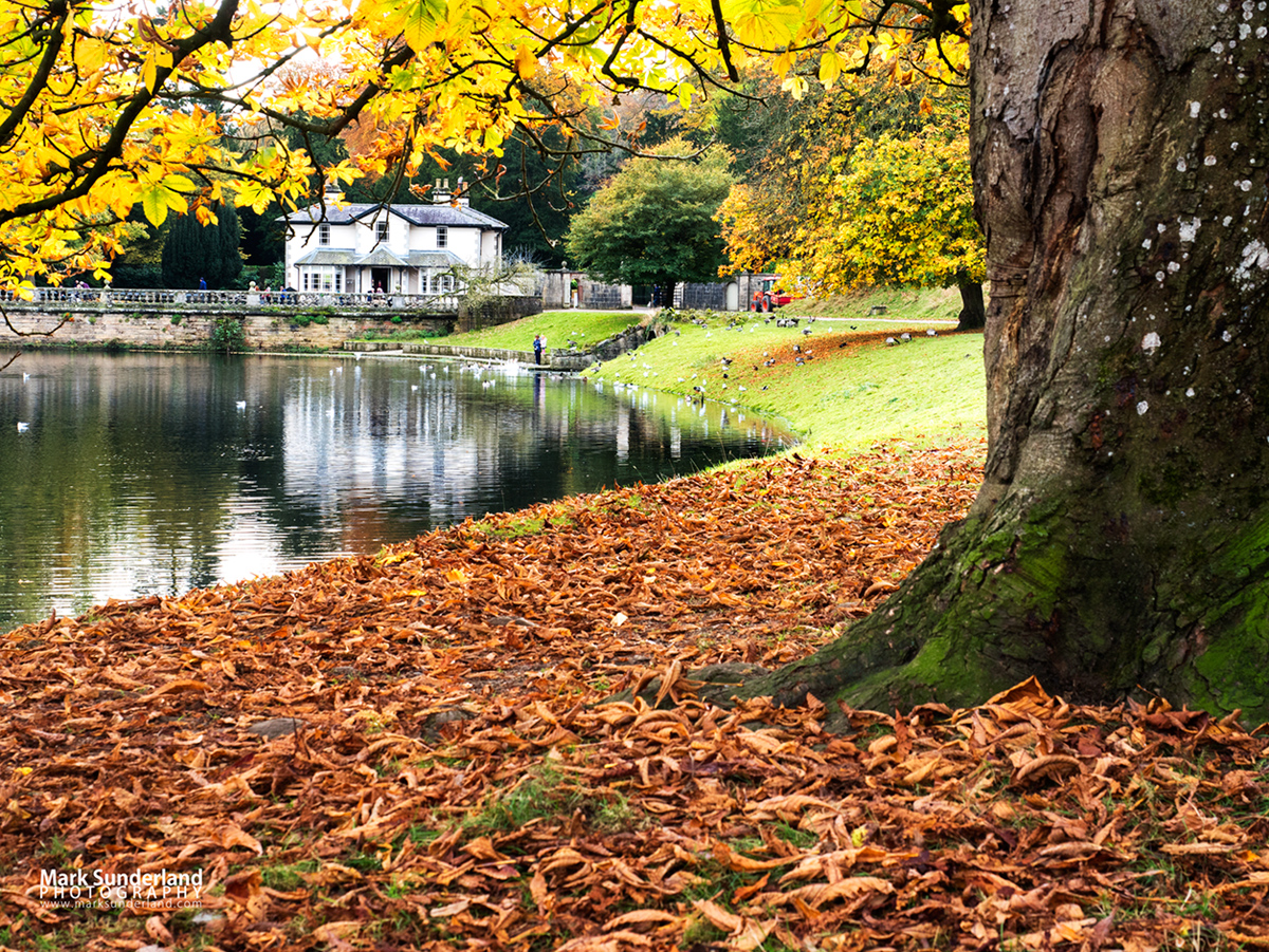 National Trust Tea Room by The Lake at Studley Royal, Ripon