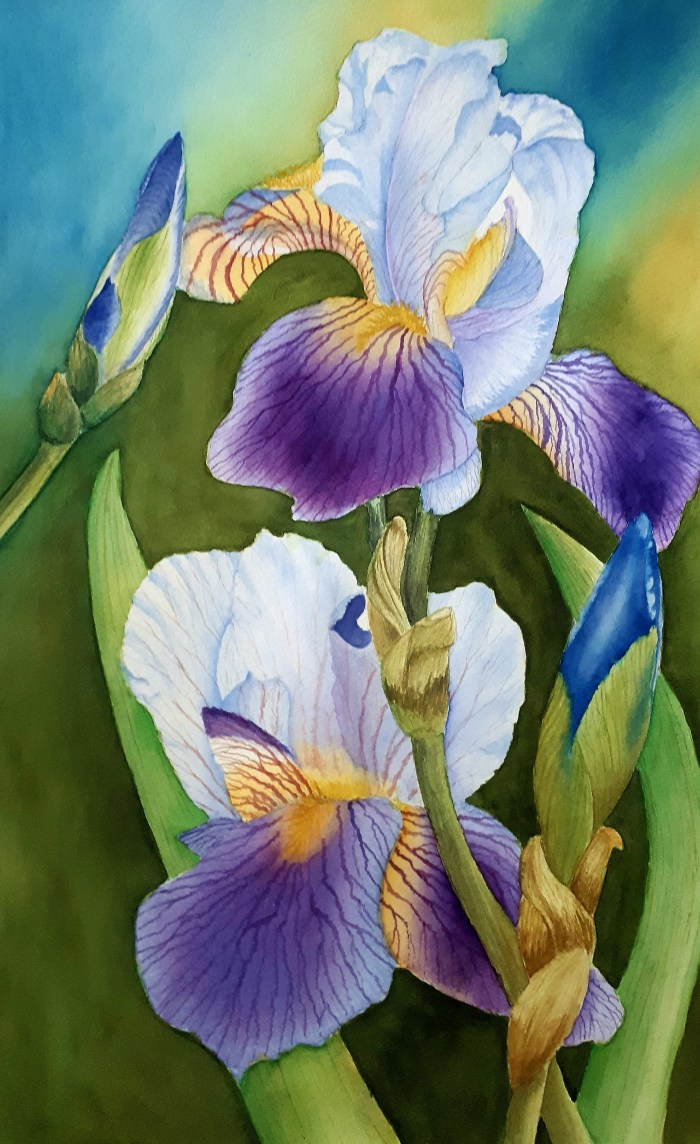 Florals Marks Watercolours