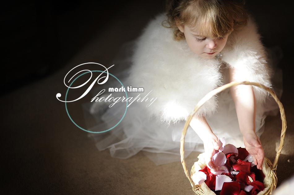 mark timm