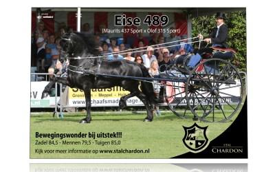 Banner Eise 489 voor Stal Chardon