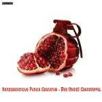 Handgranaticus Punica Granatum — Der (Hand) Granatapfel – Photoshop Compositing #markusflicker