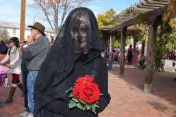 If I had a red rose . . . . November 4, 2o18 ---- photo by Mark Weber