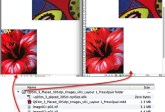PDF2DTP for InDesign CC Mac Win Down Sampled Images