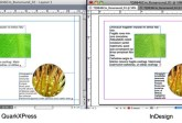 Markzware Q2ID para InDesign CC Text Wrap (grande)