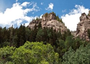 Summer Hike in Bear Creek | Telluride, Colorado