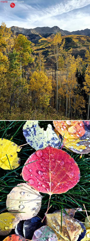 Fall colors in Telluride, Colorado | MarlaMeridith.com ( @marlameridith )