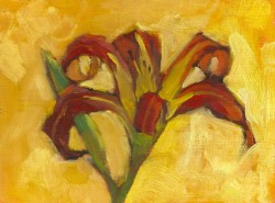 Tiger Lily on Yellow Background, oil on canvas panel, 8 x 6, 2013