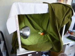 Here I draped the fabric from the inside. Noticed the light can be easily attached.