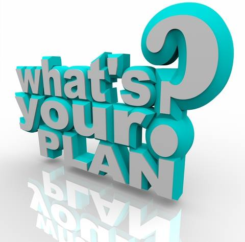what's your plan for 2015