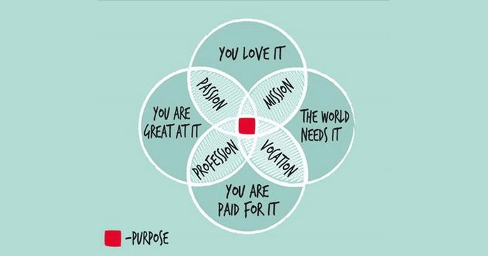 Four primary elements of ikigai