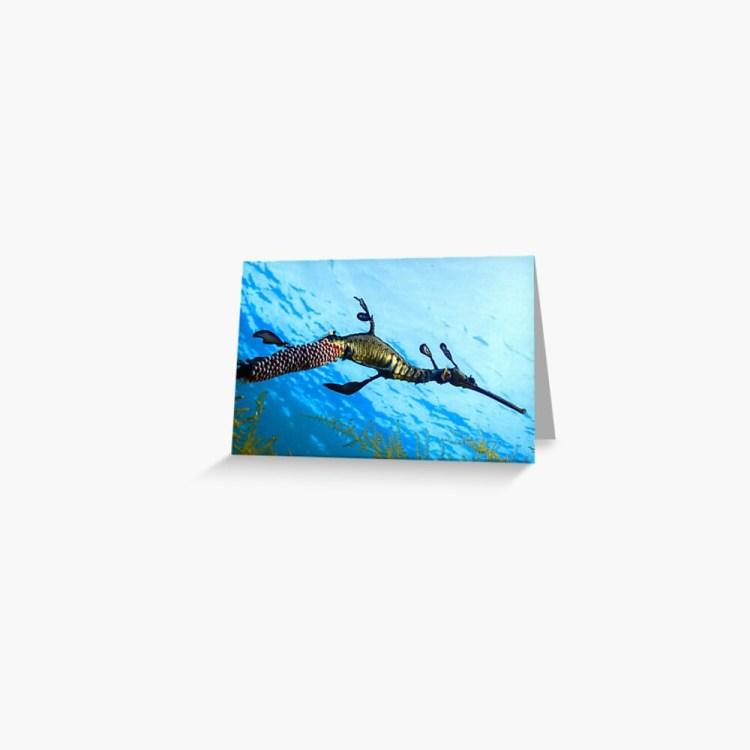 Greeting Card Weedy Seadragon