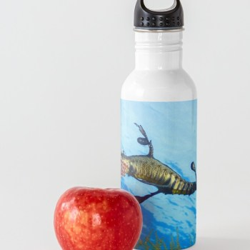 Stainless Steel Water Bottle Flask Weedy Seadragon Print