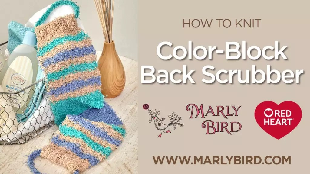 Color Block Knit Back Scrubber