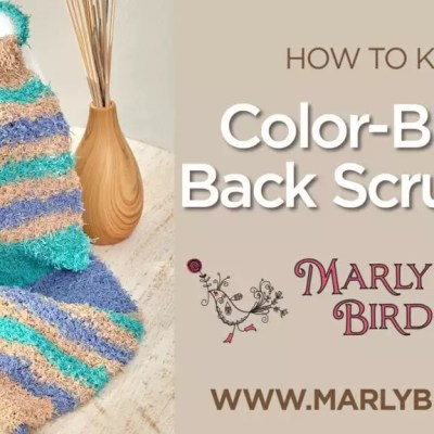 How to Knit Red Heart Color Block Knit Back Scrubber