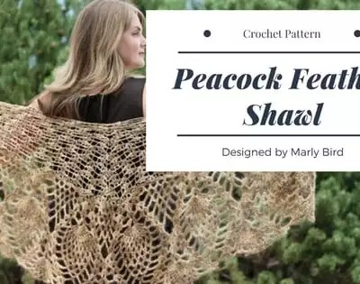 Peacock Feather Crochet Shawl