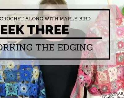 Marly Bird Granny Square Motif Cardigan Section 3 Edging