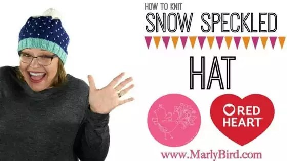 Video Tutorial How to Knit the Snow Speckled Hat with Marly Bird