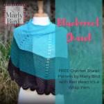FREE Crochet Shawl Pattern with It's A Wrap Yarn