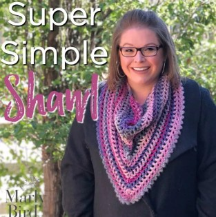 Super Simple One Ball Crochet Shawl for Beginners
