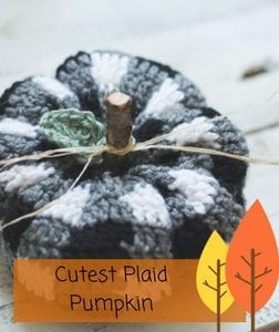 Cutest Plaid Pumpkin