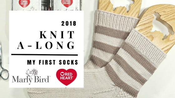 Recap of the 2018 KAL-My First Socks with Marly Bird