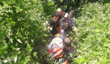 Ağaçtan düşen vatandaş uçurumdan 80 metre aşağı yuvarlandı