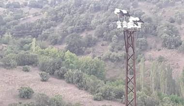 Leylekler elektrik kesintisine neden oldu
