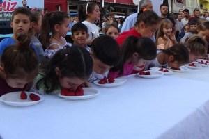 Bursa'da ilki düzenlenen Çilek Festivali yoğun ilgi gördü