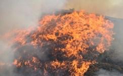 Orman yangınları erken uyarı sistemiyle engellenecek