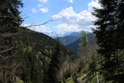Wetterstein mountain range in the background