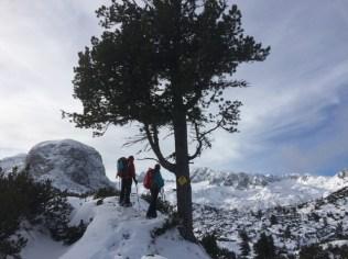 Navigating in winter landscape