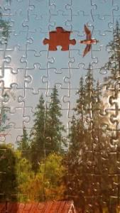 puzzle missing piece 2