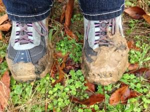 mud-1332495_1920