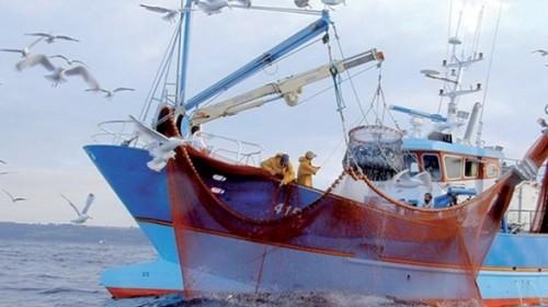 Accord de pêche : Pourquoi la Cour de justice de l'UE devra faire barrage à l'avis de son avocat général ?