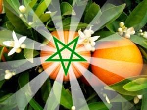 Maroc le pays des Pommes d'Or