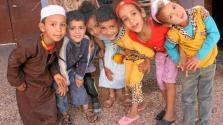du-boeuf-lorientale-pour-aider-les-enfants-de-tiwizi