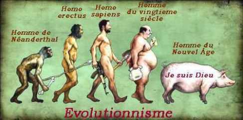 evolutionnisme-porc-textes