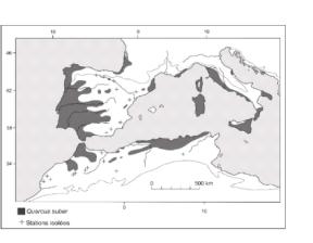 Elaboration-dune-base-de-donnees-geographiques-et-catalogue-des-stations-de-la-suberaie-de-la3