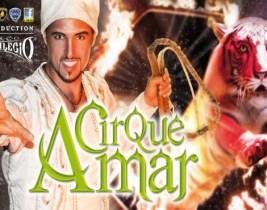 Cirque Amar: En famille ou entre amis découvrez la Magie du Cirque Amar à seulement 80dhs au lieu de 120!