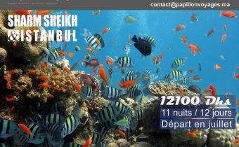 SHARM SHEIKH & ISTANBUL A 12100 DHS SEULEMENT !!!