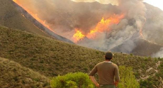 تواصل حريق غابات أكادير منذ أسبوع