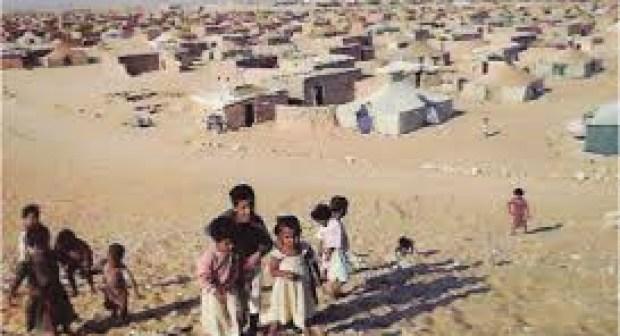 الحكومة الجزائرية تمنع وفدا عن الشبكة الأورومتوسطية للحقوق من دخول أراضيها للقيام بمهمة حول وضعية الحقوق والحريات في مخيمات تندوف