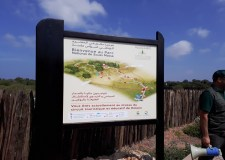 reportage sur la visite du parc souss massa dans le cadre de la 5émesemaine Forestiére Mediterranéenne