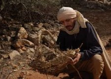 ورشة الإنتاج السينمائي والسمعي البصري الأمازيغي ضمن فعاليات تميتار